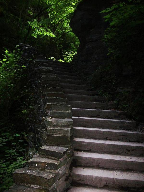Watkins Glen Art Print featuring the photograph Stairway Watkins Glen 1 by InTheSane DotCom