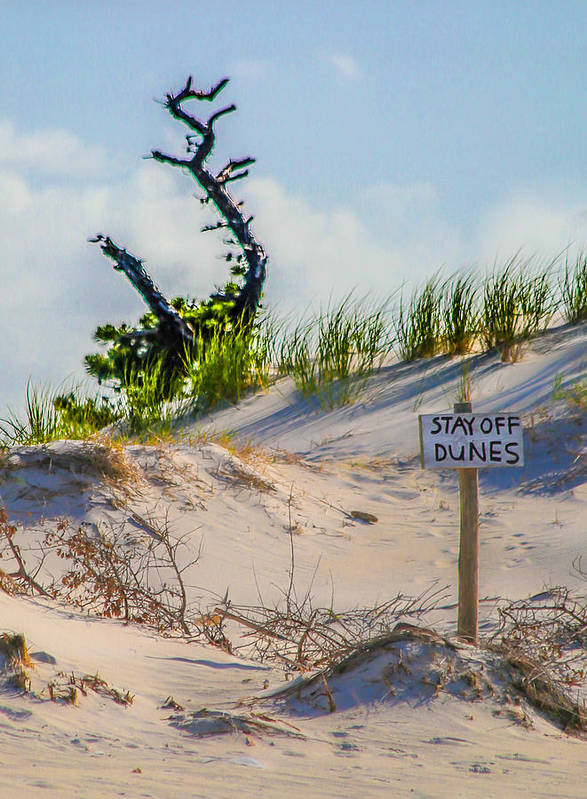 Sand Art Print featuring the photograph Stay Off Dunes by Paula OMalley