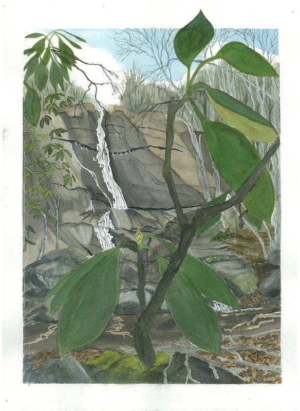 Stone Mtn Falls Art Print featuring the painting Stone Mountain Falls - The Upper Cascade - Iv by Joel Deutsch
