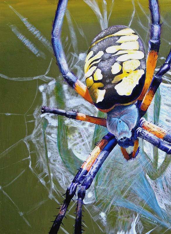 Spider Art Print featuring the painting The Beauty Of Writing by Cara Bevan