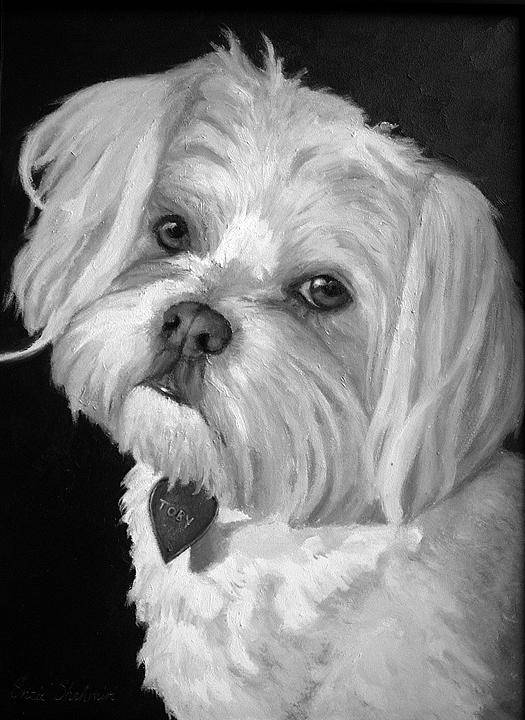 Dogs Art Print featuring the painting Toby by Portraits By NC