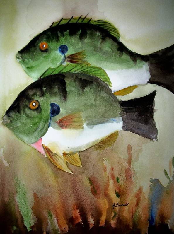 Fish Art Print featuring the painting Two Bluegills by Audrey Bunchkowski