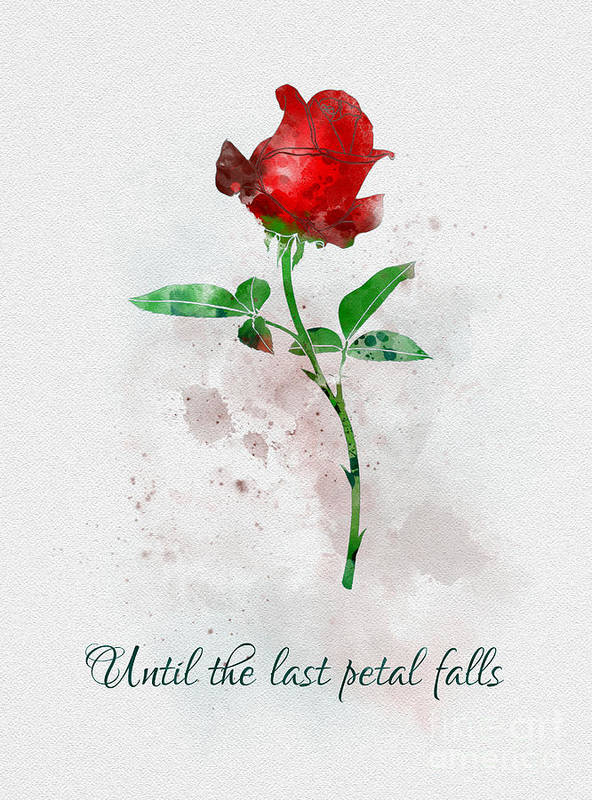 Until The Last Petal Falls Art Print By My Inspiration
