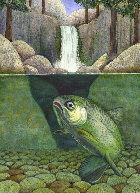 Trout Art Print featuring the painting Water by Catherine G McElroy