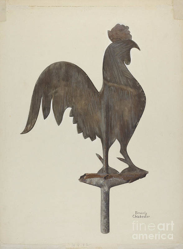 Art Print featuring the drawing Weather Vane by Beverly Chichester