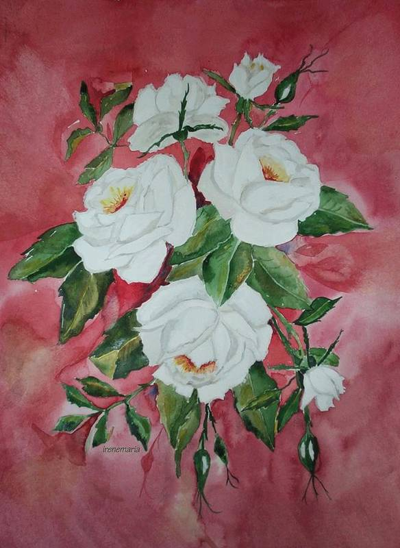 Roses Flowers Art Print featuring the painting White Roses by Irenemaria Amoroso