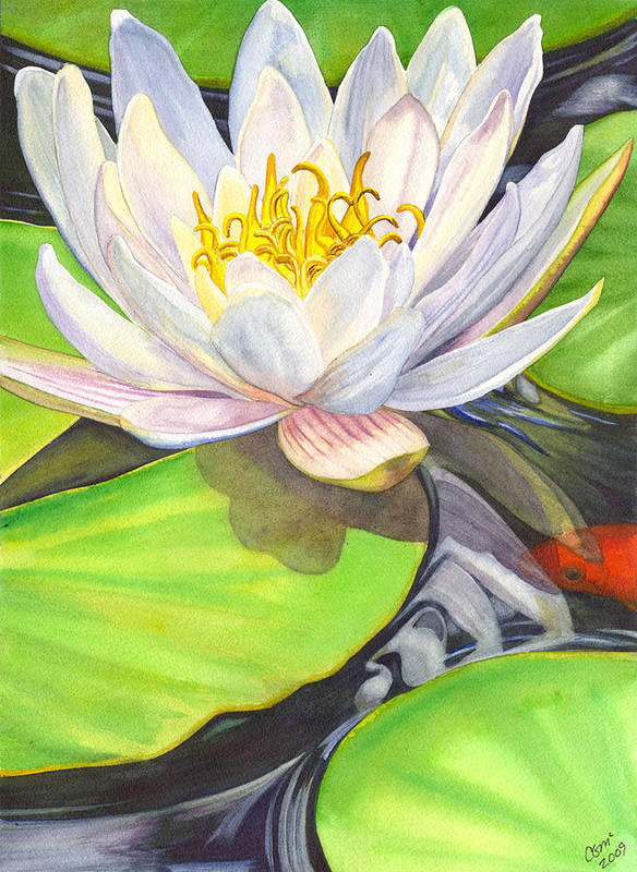 Lily Art Print featuring the painting White Water Lily by Catherine G McElroy