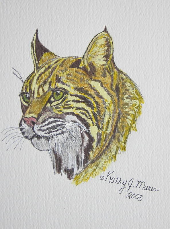 Wild Bobcat Art Print featuring the painting Wild Bobcat by Kathy Marrs Chandler