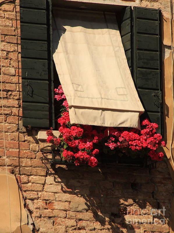 Venice Art Print featuring the photograph Window With Flowers In Venice by Michael Henderson