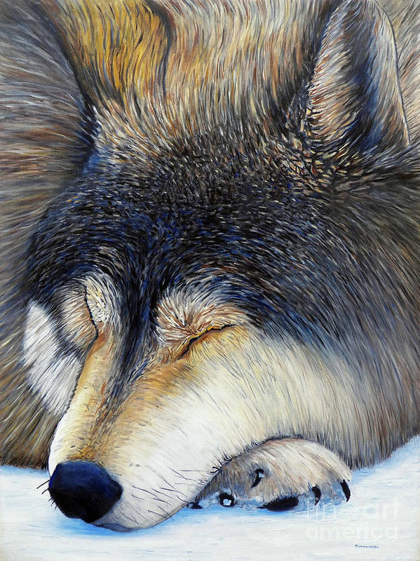 Wolf Art Print featuring the painting Wolf Dreams by Brian Commerford