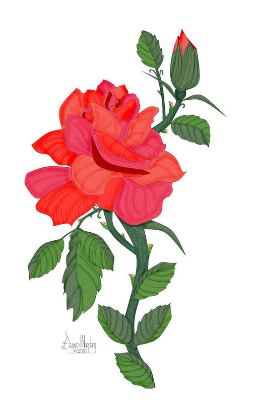 Red Rose Art Print featuring the painting Calypso Rose by Anne Norskog