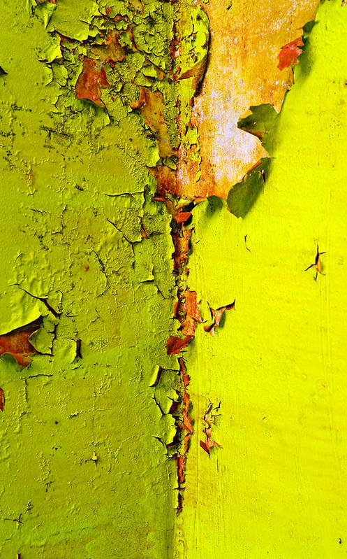 Skip Hunt Art Print featuring the photograph Going Green by Skip Hunt