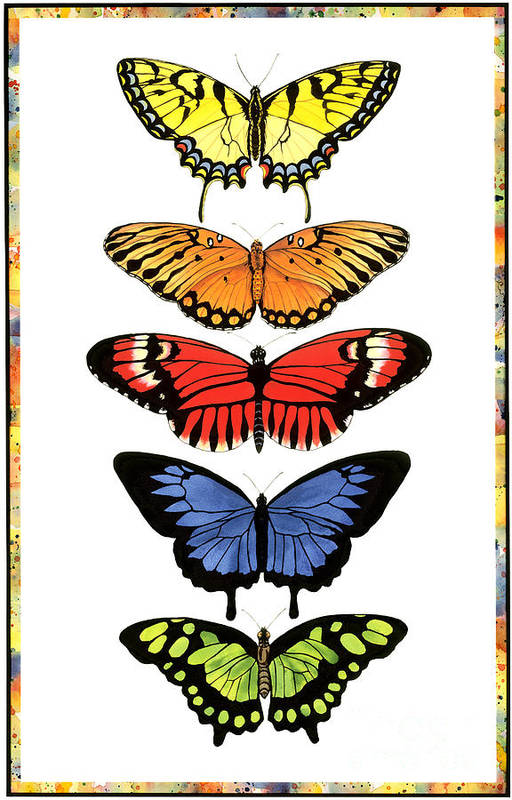 Butterflies Art Print featuring the painting Rainbow Butterflies by Lucy Arnold