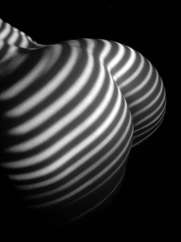 0028 Black And White Striped Nude Abstraction Art Print By