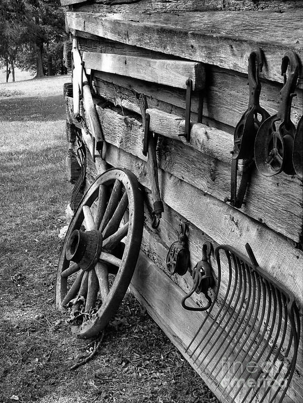 Art Print featuring the photograph Cabin Wall by Julie Dant