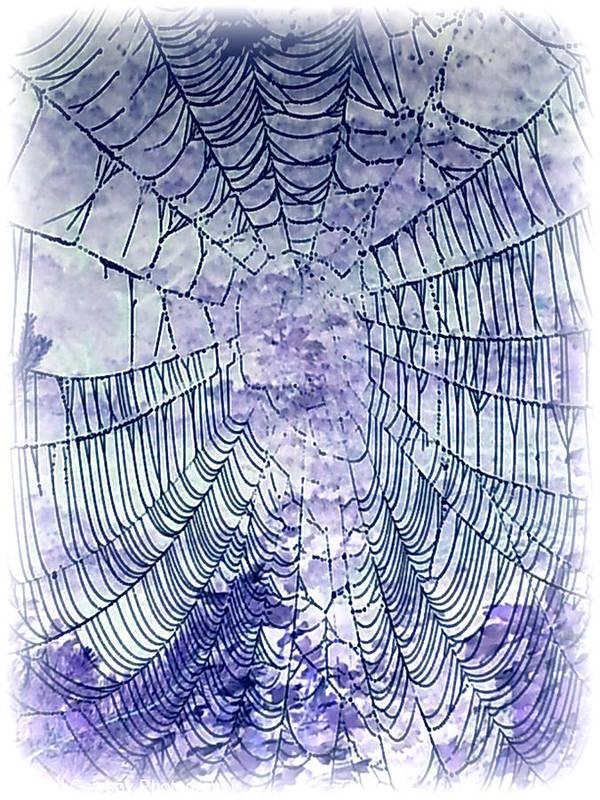 Web Art Print featuring the photograph Web2invert by Daniel Jakus