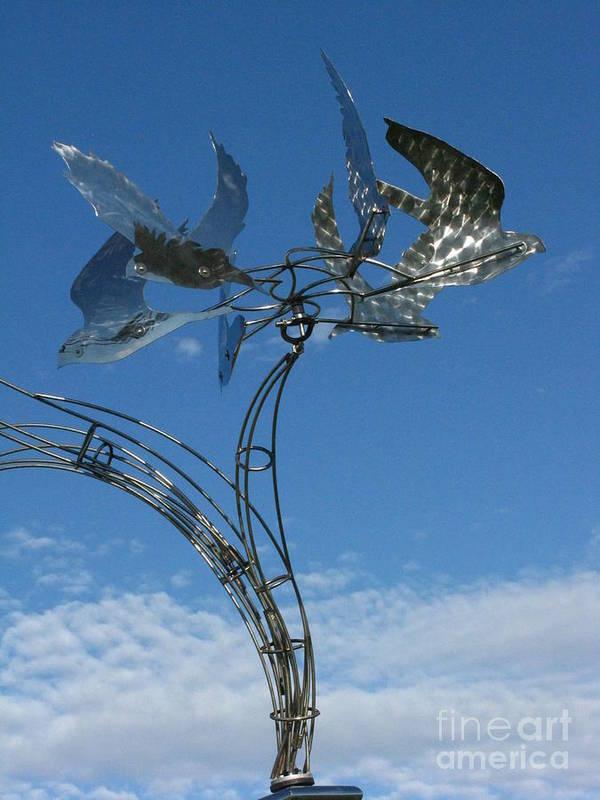 Whirlybird Art Print featuring the photograph Whirlybird by Peter Piatt