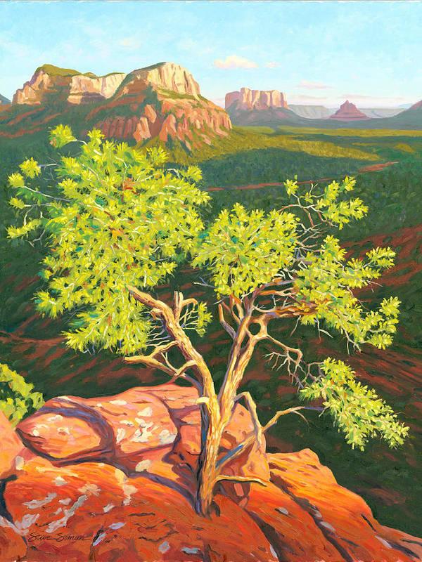 Pinion Pine Tree Art Print featuring the painting Airport Mesa Vortex - Sedona by Steve Simon