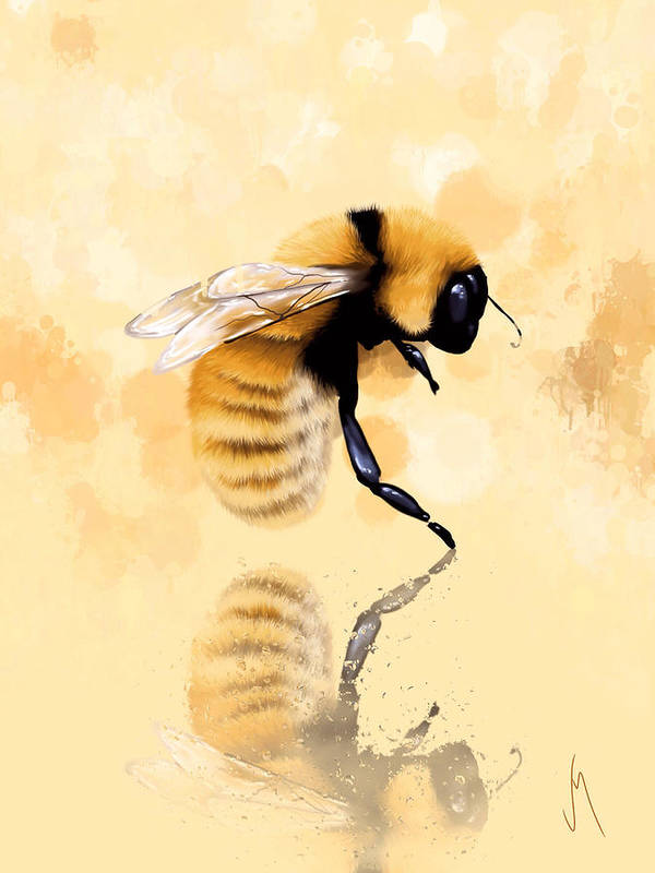 Bee Art Print By Veronica Minozzi