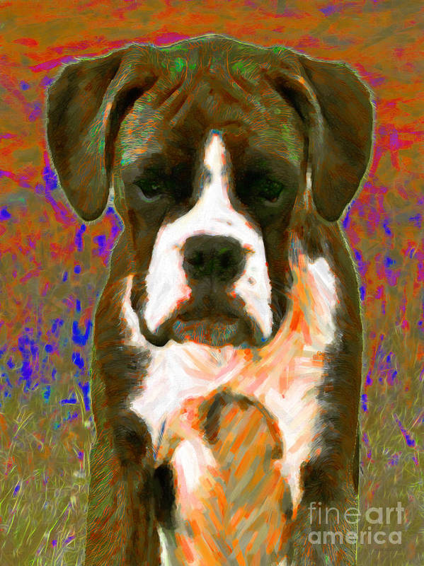 Animal Art Print featuring the photograph Boxer 20130126v1 by Wingsdomain Art and Photography