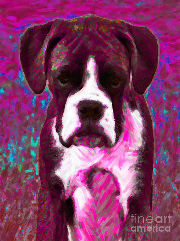 Animal Print featuring the photograph Boxer 20130126v7 by Wingsdomain Art and Photography
