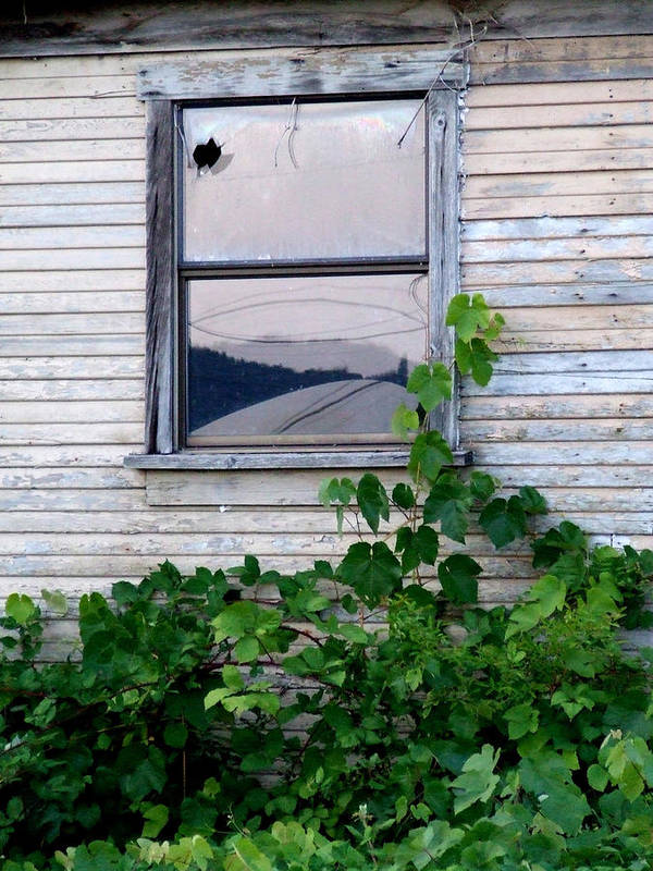 Abandoned Art Print featuring the photograph Broken Window by Everett Bowers
