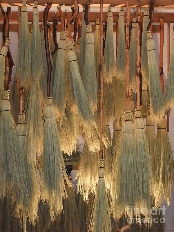 Canada Art Print featuring the photograph Canada Vancouver Brooms by Coventry Wildeheart