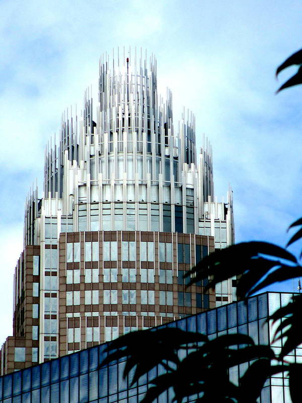 Charlotte Art Print featuring the photograph Charlottes Crown by Randall Weidner
