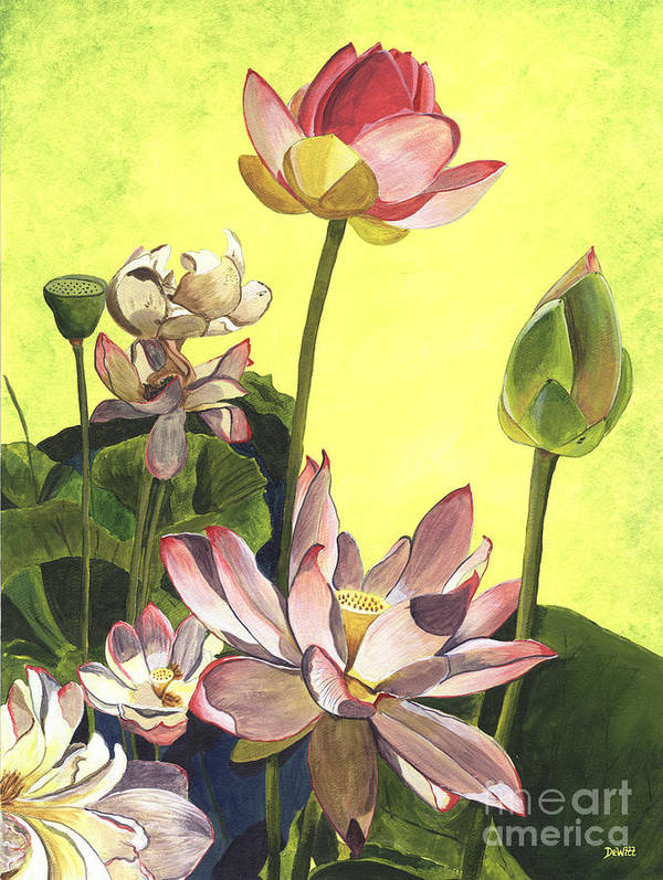 Floral Art Print featuring the painting Citron Lotus 1 by Debbie DeWitt