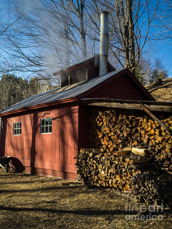Shack Art Print featuring the photograph Classic Vermont Maple Sugar Shack by Edward Fielding