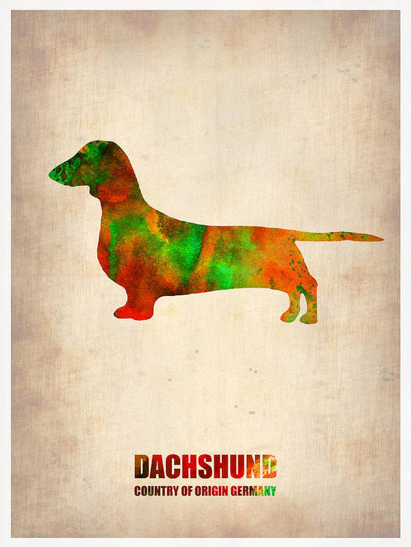 Dachshund Art Print featuring the painting Dachshund Poster 2 by Naxart Studio
