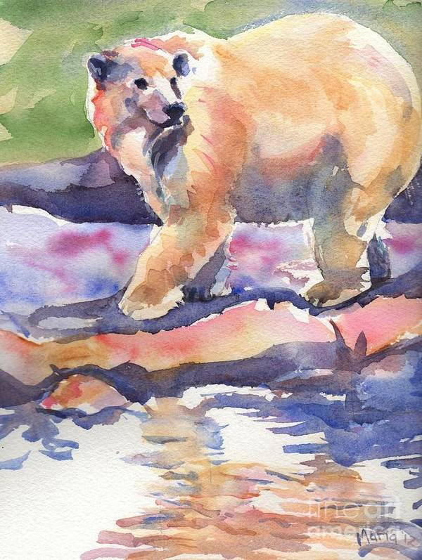 Polar Bear Watercolor Painting Art Print featuring the painting Don't Look Back by Maria's Watercolor