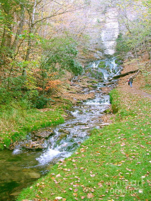 Springs Art Print featuring the photograph Fall Springs by Minding My Visions by Adri and Ray