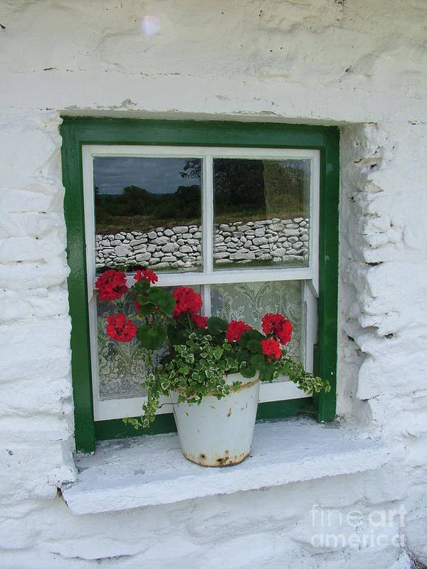 Window Art Print featuring the photograph Farm House Window by Joe Cashin