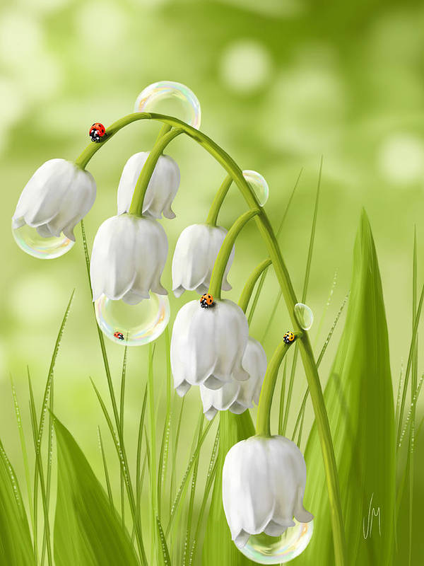 Lily Of The Valley Paintings Fine Art America