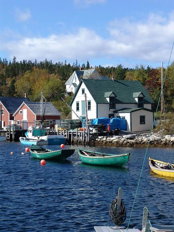 Nova Scotia Art Print featuring the photograph North-west Cove by George Cousins