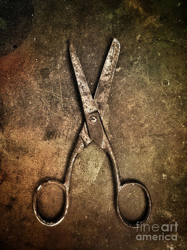 Scissors Art Print featuring the photograph Old Scissors by Carlos Caetano