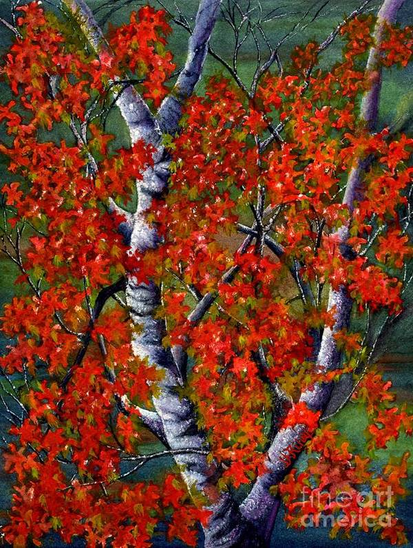 Birch Trees Art Print featuring the painting Paper White Birch Reflections by Janine Riley