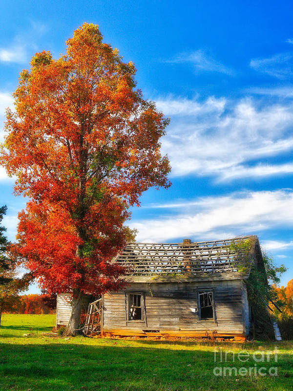 North Carolina Art Print featuring the photograph Past Its Prime I - A Barn In The Fall by Dan Carmichael