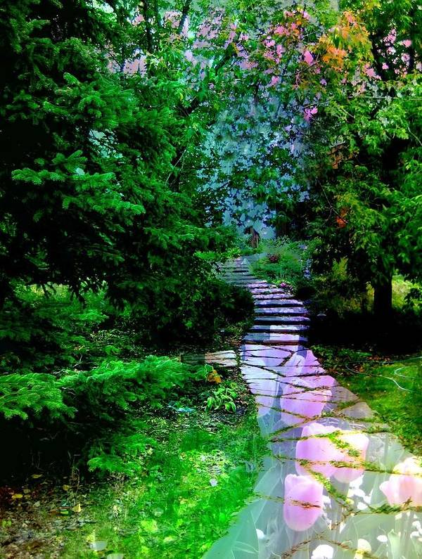 Path Art Print featuring the photograph Perhaps It Will Come by Shirley Sirois