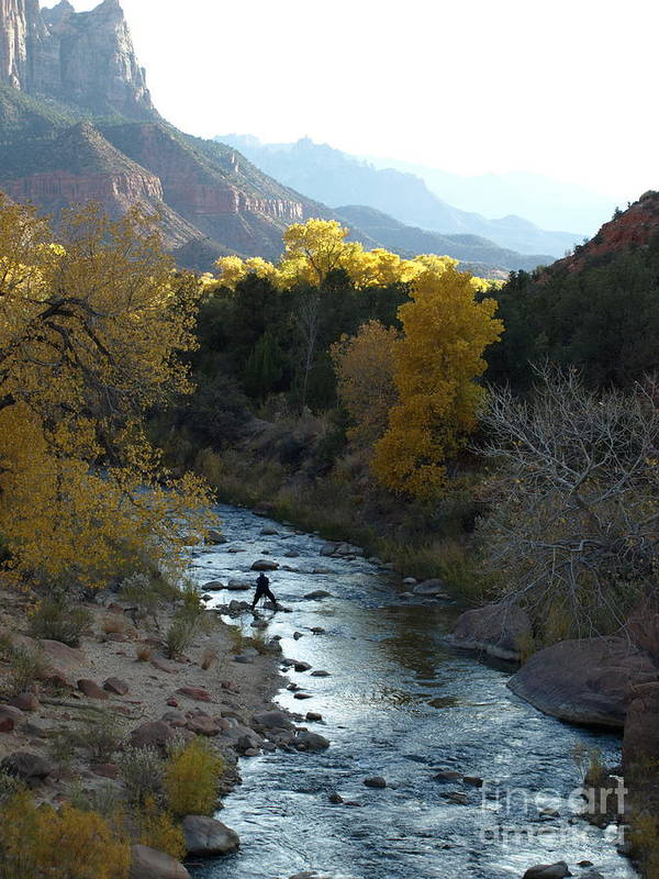 National Park Art Print featuring the photograph Photographing Zion National Park by Jacklyn Duryea Fraizer