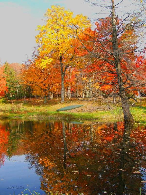 Fall Art Print featuring the photograph Reflections Of Autumn by Judy Waller
