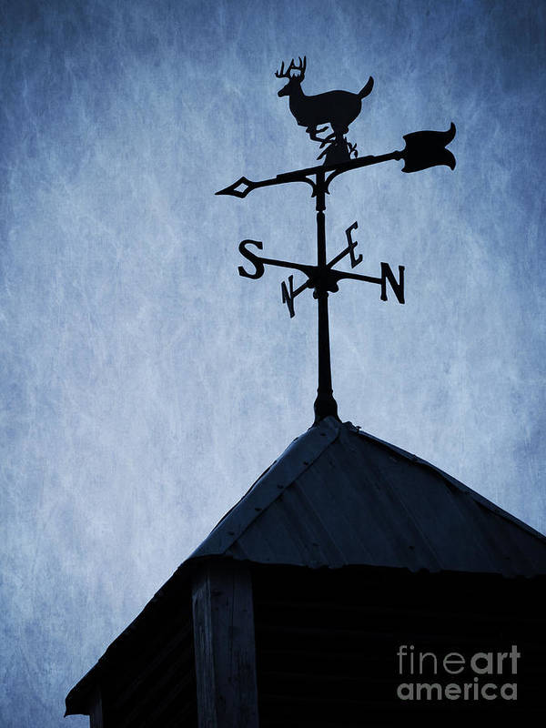 Deer Print featuring the photograph Skyfall Deer Weathervane by Edward Fielding