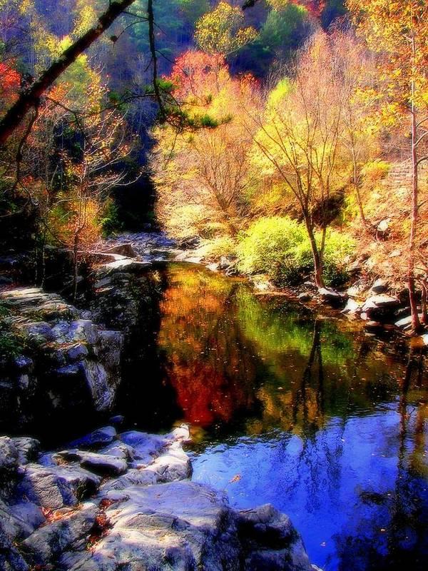 Autumn Warterscapes Art Print featuring the photograph Splendor Of Autumn by Karen Wiles