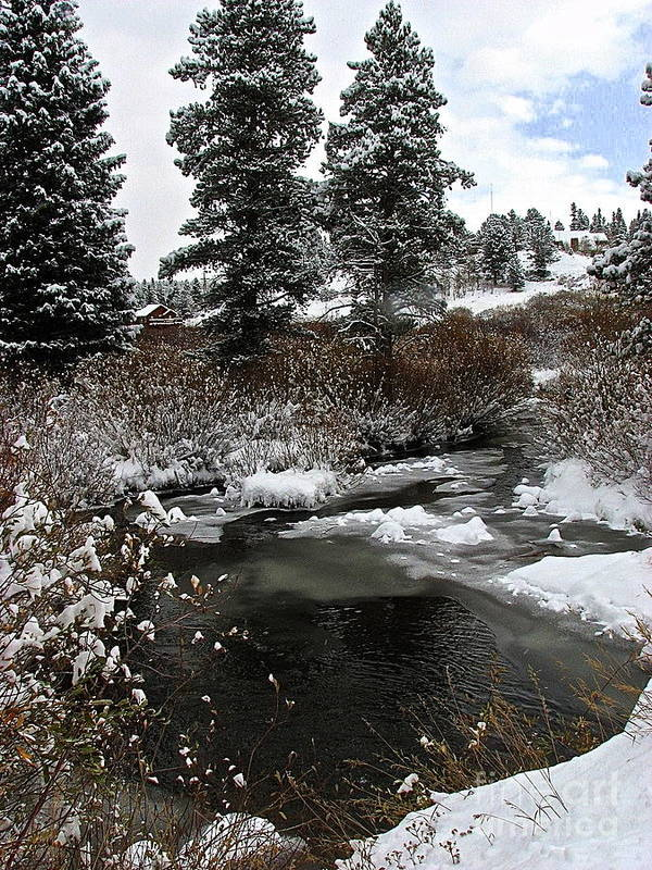 Colorado Landscape Art Print featuring the photograph Still Open Water by Susan Chesnut