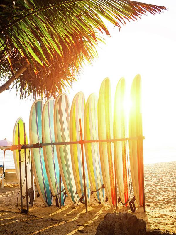 Recreational Pursuit Art Print featuring the photograph Surfboards At Ocean Beach by Arand