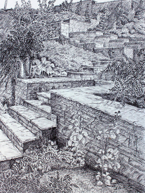 Garden Art Print featuring the drawing The Garden Wall by Janet Felts