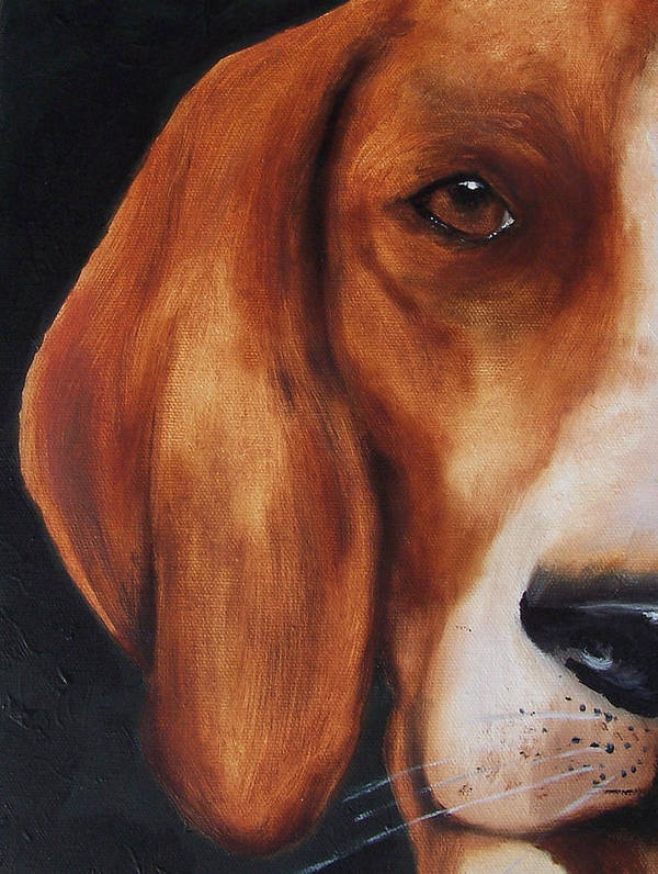 Dog Art Print featuring the painting The Hound by Kathy Laughlin