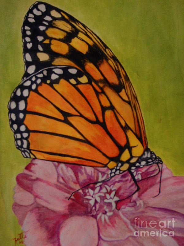 Butterfly Art Print featuring the painting The Monarch by Suzette Kallen