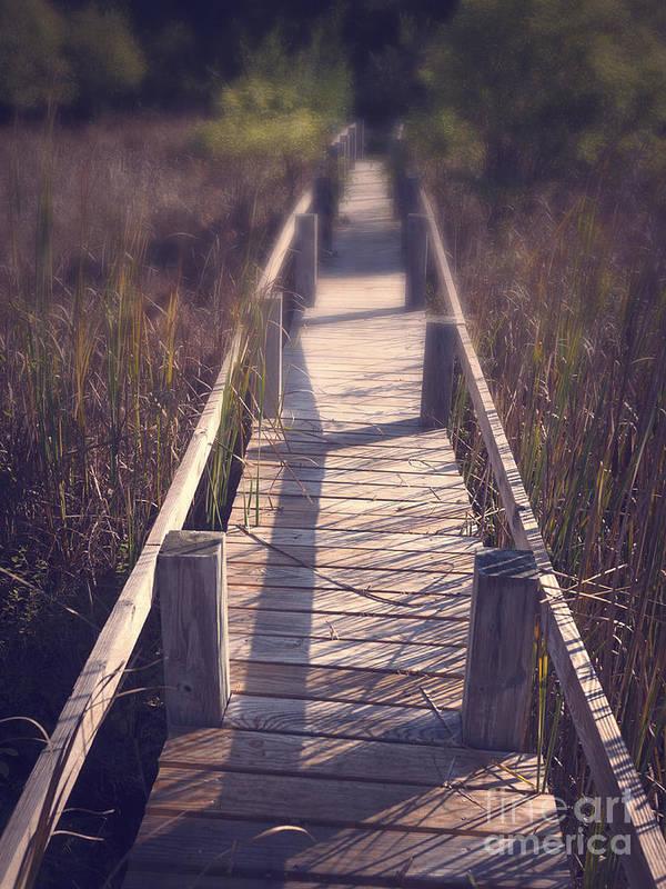 Appalachian Trail Print featuring the photograph Walkway Through The Reeds Appalachian Trail by Edward Fielding